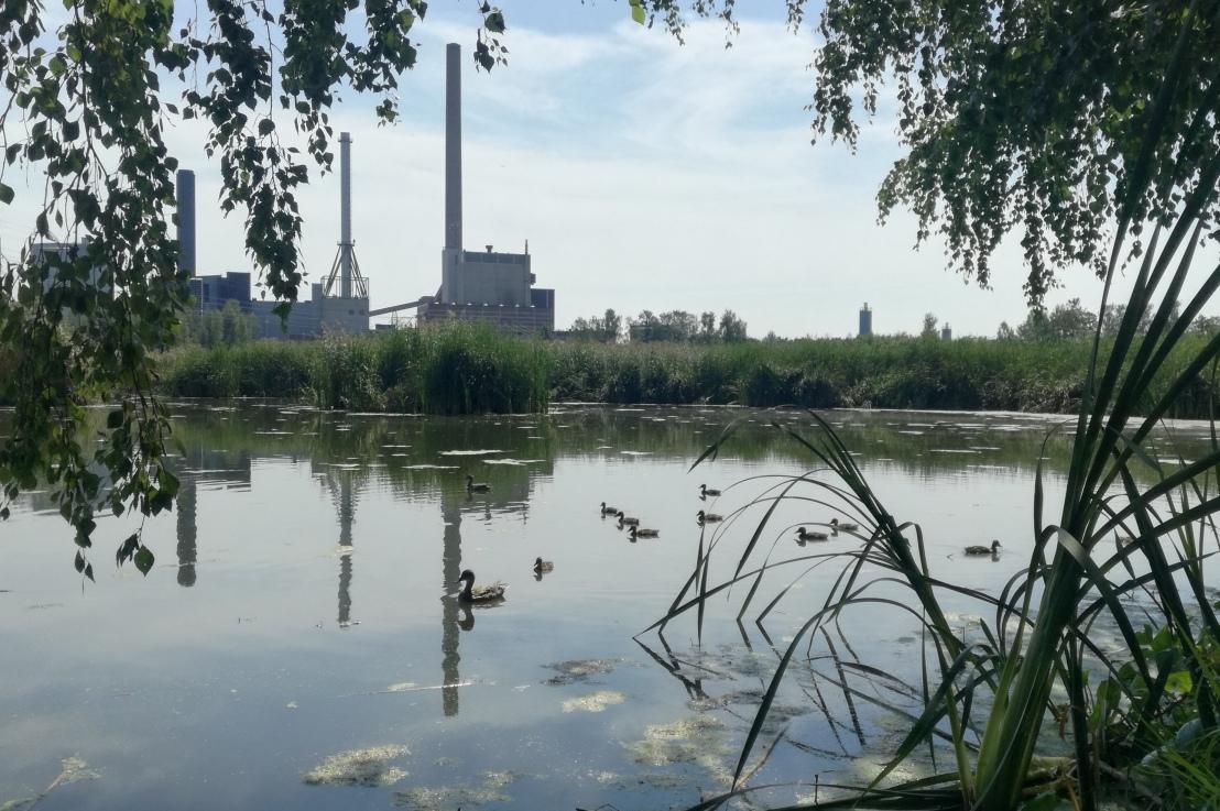 Ilmastotoimet ja luonnon monimuotoisuuden turvaaminen eivät voi enääodottaa